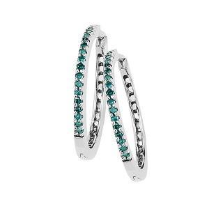 Silver Diamond Earrings 1/4 ctw / FE1121