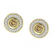 3/4 ctw Brown & White Diamond Earrings in 10K Yellow Gold / FE4086