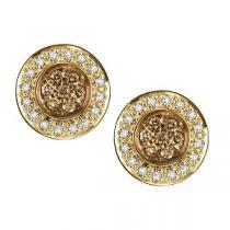 1/3 ctw Brown & White Diamond Earrings in 10K White Gold /NE281